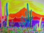 Saguaro National Park 14x11 / 2007